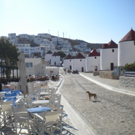 Astypalaia_2012_selected82